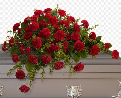 Carnation Casket