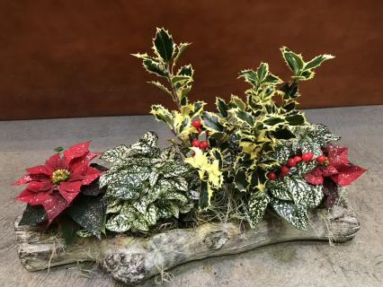 Yule Log Planter
